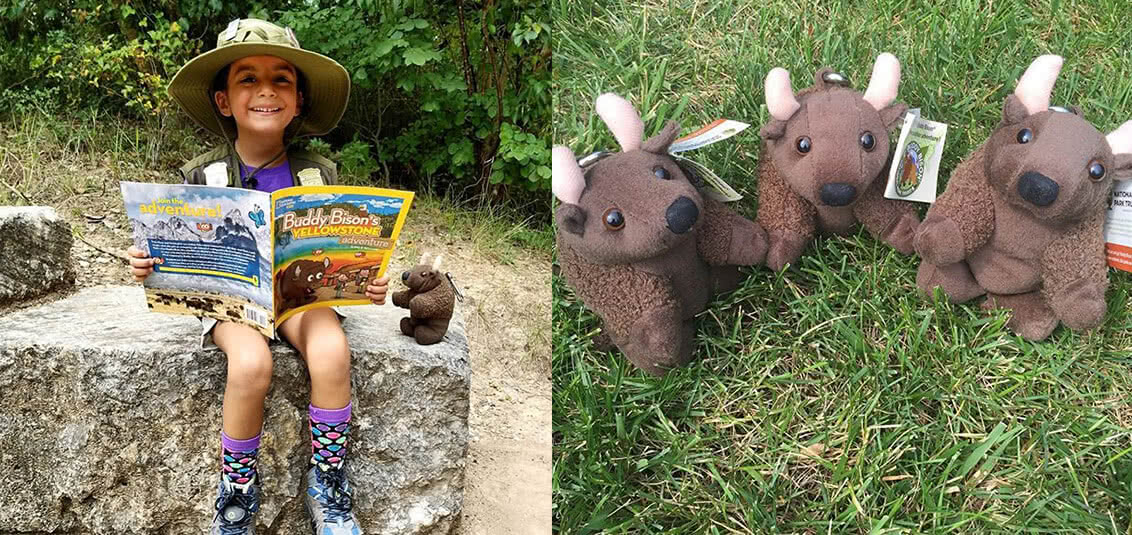 Little girl reading Buddy Bison's Yellowstone Adventure
